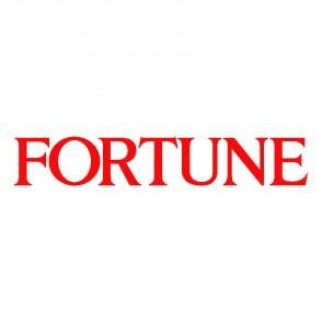 Acquistare FORTUNE in Italia ad un prezzo doccasione | Ordina online con una carta di credito